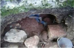 Entrada cueva pozo (descubrimiento 2013)