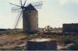 Estat original (any 1993)